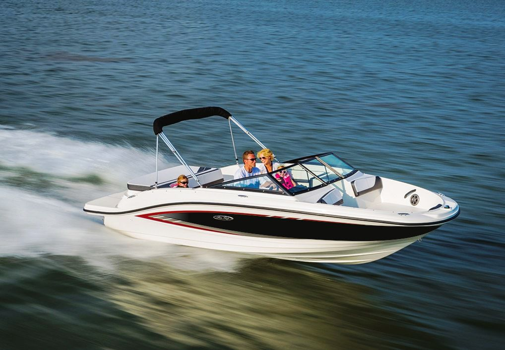 Sea Ray 19 Spx - fotka 1